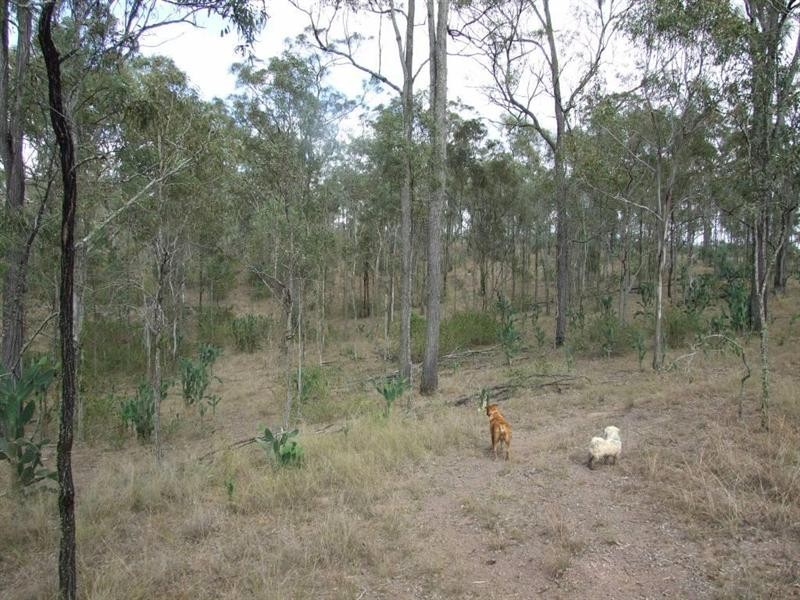 Lot 5 Back Creek Road, Cooyar QLD 4402