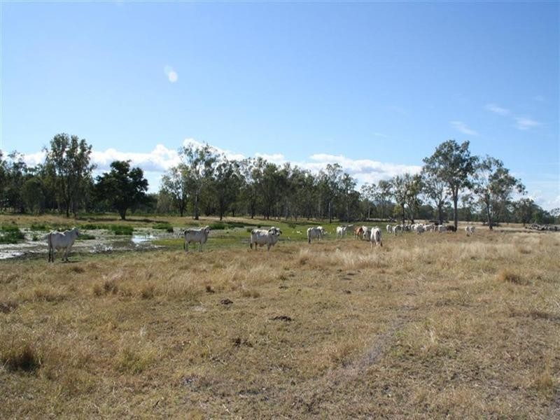 L 119 and 284 Nine Mile Road, Fairy Bower QLD 4700