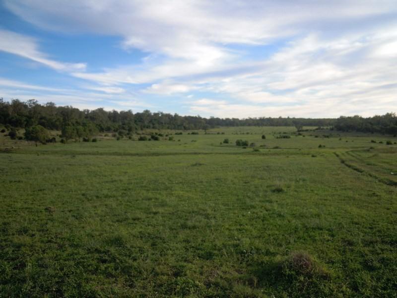 0 O'Maras Road, Pittsworth QLD 4356