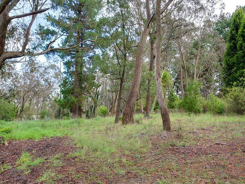Lot 24 Grandview Road, Mount Victoria NSW 2786