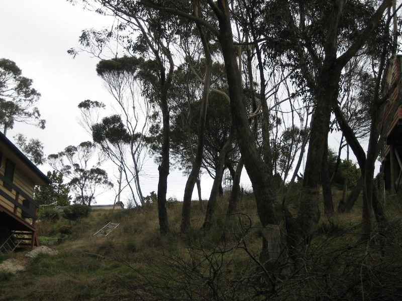 161 Great Western Highway, Blackheath NSW 2785