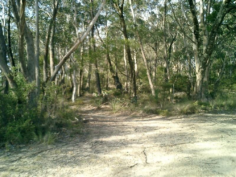 69 Victoria Street, Mount Victoria NSW 2786