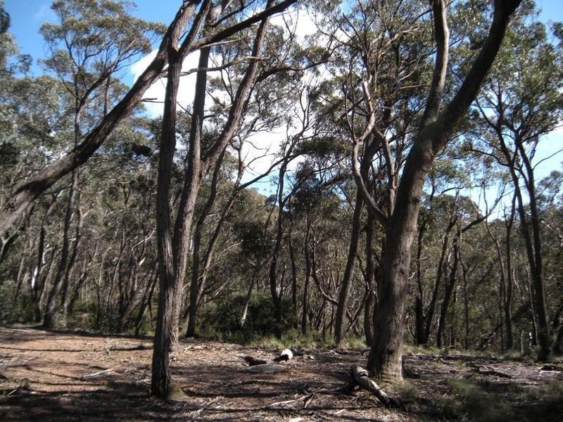 11 (Lot 10) Balmoral Road, Mount Victoria NSW 2786