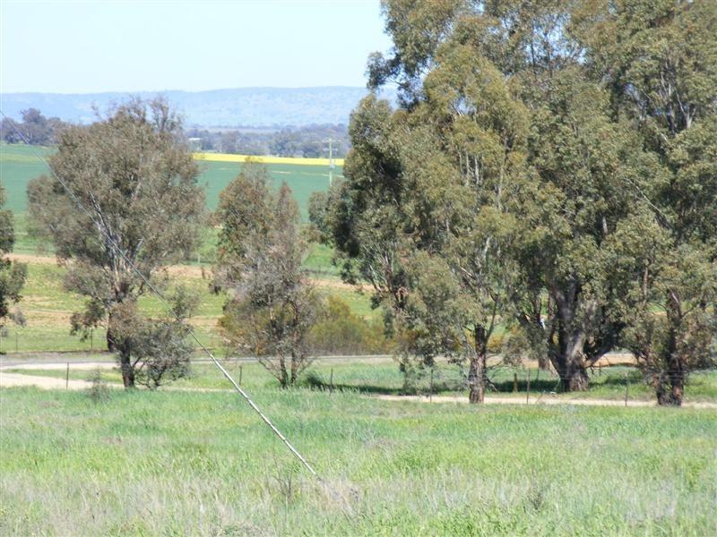 Lot 29 Kangaroo Flat Road, Cowra NSW 2794