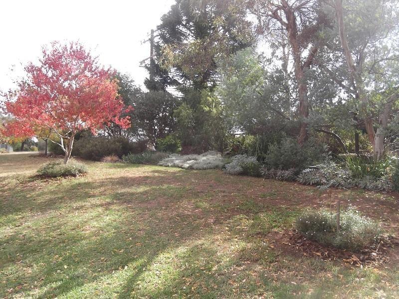23 Dawson Drive, Cowra NSW 2794