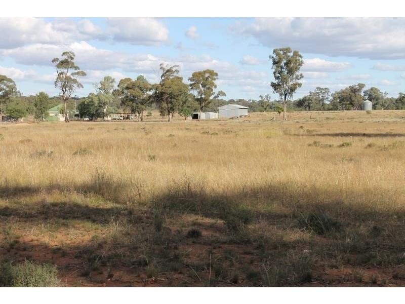 Springfield Melrose Road, Albert NSW 2873