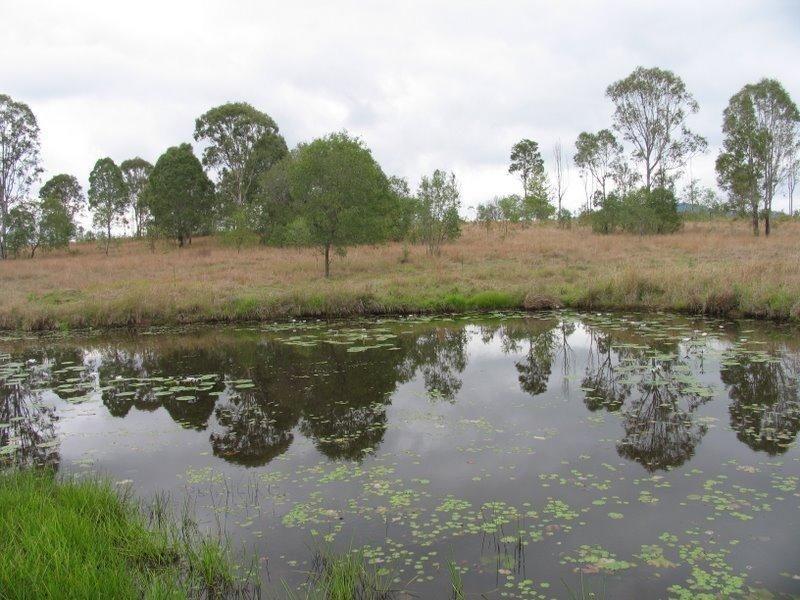 Bauple-Woolooga Road, Woolooga QLD 4570