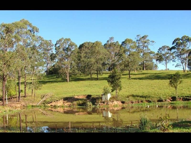 Firefly NSW 2429