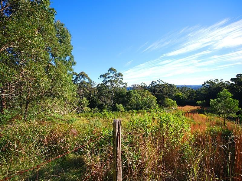 325 Brush Road, Ourimbah NSW 2258